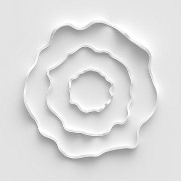 Weiße Blüte von Jörg Hausmann