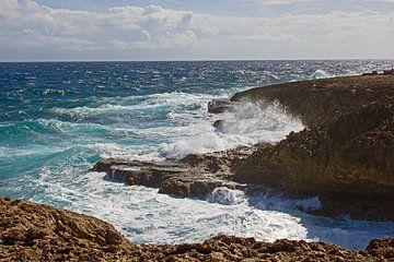 Curacao, de Wilde kust van Boca Tabla van Discover Dutch Nature