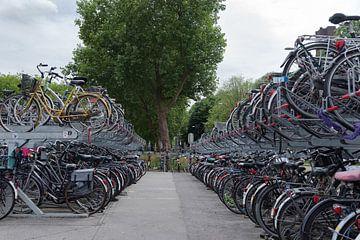 Nederland fietsland! van Cilia Brandts