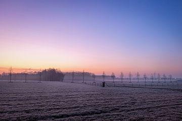 Bevroren veld van Johan Vanbockryck