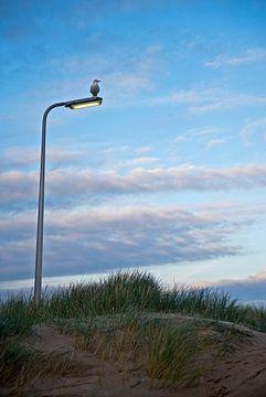 Strand De Koog van Mariska Hofman