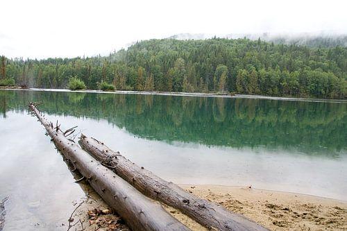 Wells Grey National Parc Canada van