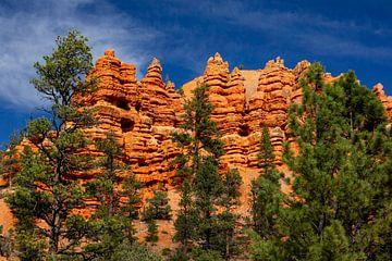 Red Canyon, Utan, USA von Adelheid Smitt