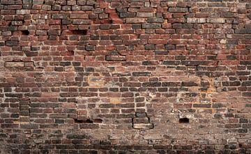 Baksteen oude muur Fotobehang 2