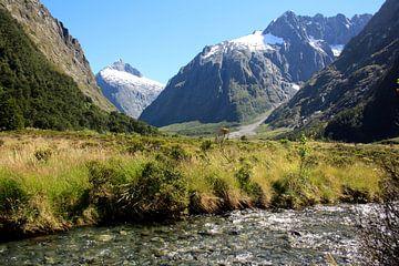 Milford Sound, Nieuw Zeeland von Pamela Fritschij