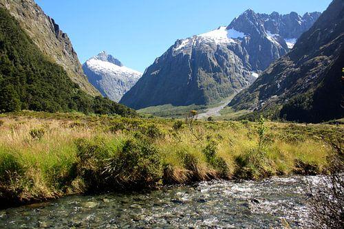 Milford Sound, Nieuw Zeeland van Pamela Fritschij
