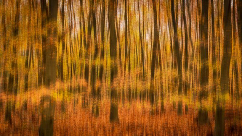 Abstract Bos van Erik Veldkamp
