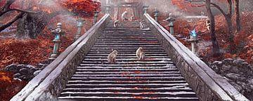 Affen-Tempel von Rocky Schouten