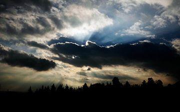 Amerongse Berg von Christiaan Krouwels