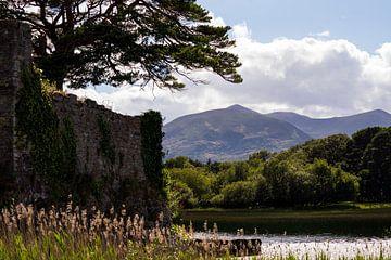 Alte Mauern, Wasser und Berge an einem schönen Tag in Killarney, Irland von elma maaskant