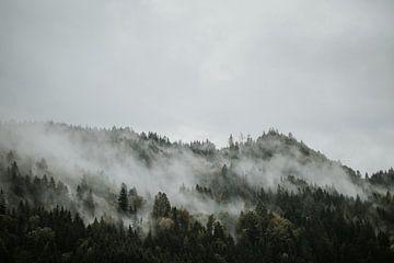 Neblige Berggipfel in Österreich von Trix Leeflang