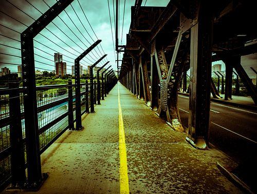 Bridge von Anke van Beurden