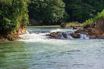 Sarapiquí-Fluss, Selva Verde, Regenwald in Costa Rica von Mirjam Welleweerd
