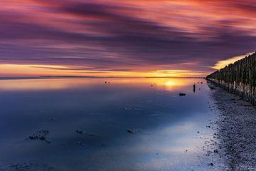 Sonnenaufgang im Schlammloch von Marcel Kieffer