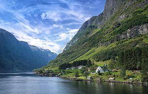 Dorpje aan het Aurlandsfjord van