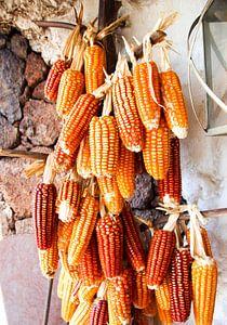 Spanish Corn van