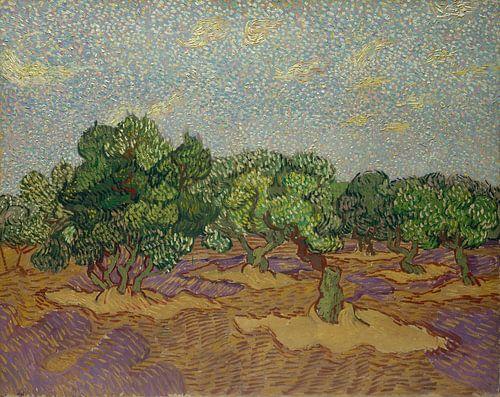 Vincent van Gogh. Landschap van
