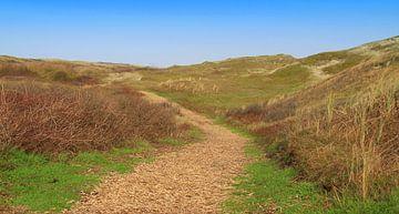 Wanderweg in den Dünen von Jose Lok