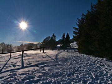 Sneeuwvlokken op het Schauinsland van Timon Schneider