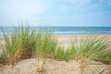 Uitzicht vanaf de duinen op het Noordzee strand van Sjoerd van der Wal