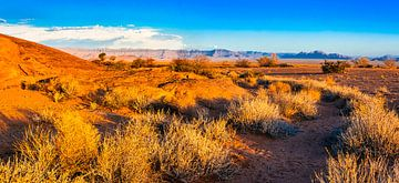 Panorama van de Namib woestijn, Namibië van Rietje Bulthuis
