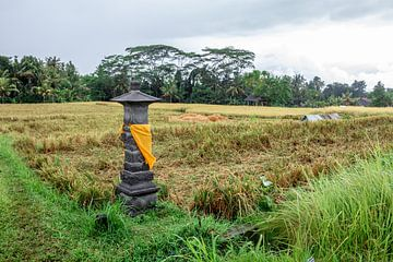 Altar zwischen den Feldern in Bali von Mickéle Godderis