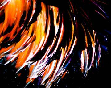 Feathers II von lieve velle