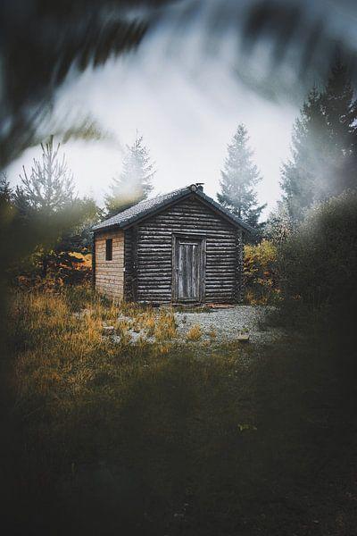 Cabin in the woods van Bryan Venken