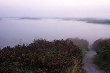Nebel in den Dünen mit Fußweg nach Katwijk von Menno van Duijn