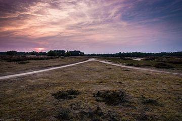 Zonsondergang aan de Tafelbergheide von Naresh Bhageloe