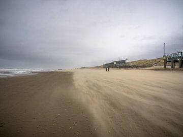 Une côte venteuse à Callantsoog