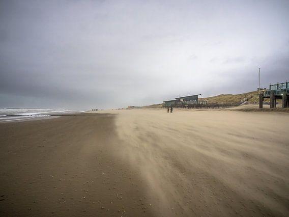 Eine windige Küste bei Callantsoog