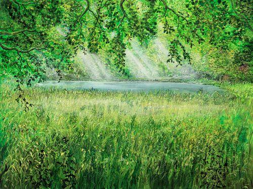 Naturschirm von Silvian Sternhagel
