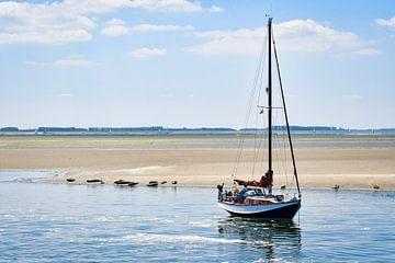 Zeilboot op de Oosterschelde