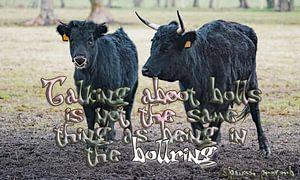 Über Bullen zu sprechen ist nicht dasselbe wie in der Stierkampfarena zu sein von Wieland Teixeira