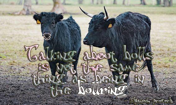 Praten over stieren is niet hetzelfde als in de arena zijn