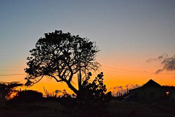 Zonsondergang von Ron Steens