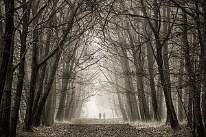 Eenzaam in de mist van