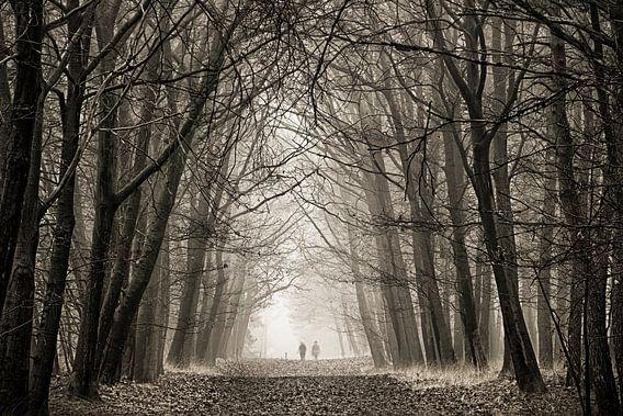 Eenzaam in de mist van Sandra Kuijpers