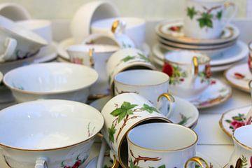 thee kopjes van laura van klooster