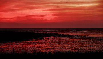 Het rode wad II van Brenda van der Zee
