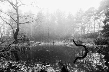 Waldschwimmbad im Nebel (schwarz und weiß) von Fotografie Jeronimo