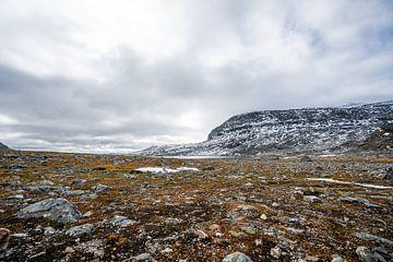 Orangefarbenes Moos und schneebedeckte Berge von Mickéle Godderis