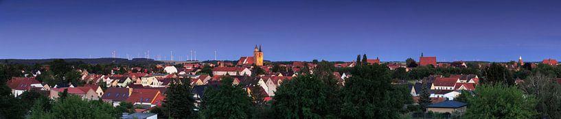 Jüterbog Panorama zur blauen Stunde von Frank Herrmann