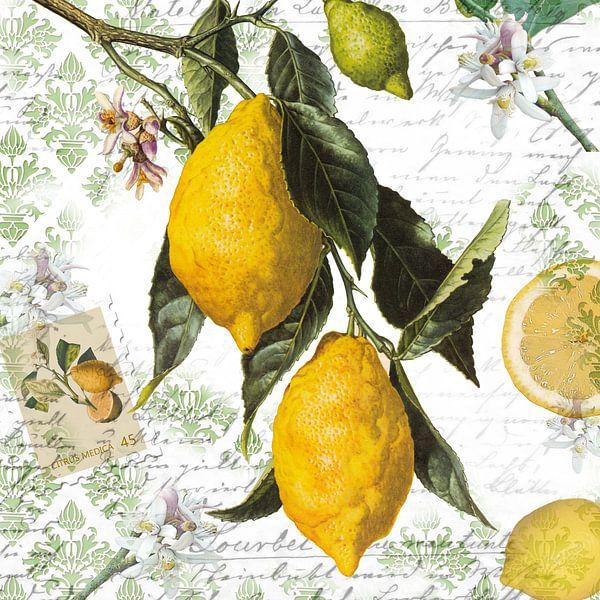 Zitronenzweig van christine b-b müller