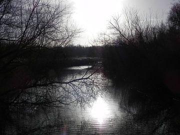 Winter zon weerspiegeling in het water. von Ingrid Van Maurik