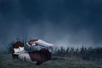 Schlafende Schönheit von Elianne van Turennout