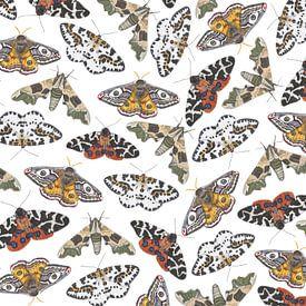 Nachtvlinders op een wit doek van Jasper de Ruiter