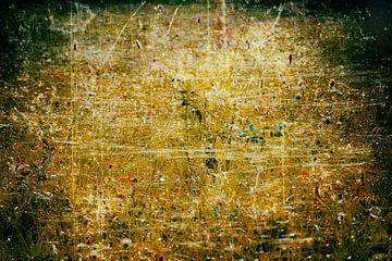 Goldenes Leuchten von Ferry Noothout