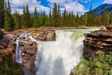 Athabasca-Wasserfall in Jasper N.P., Alberta, Kanada